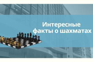 5 фактов о шахматах